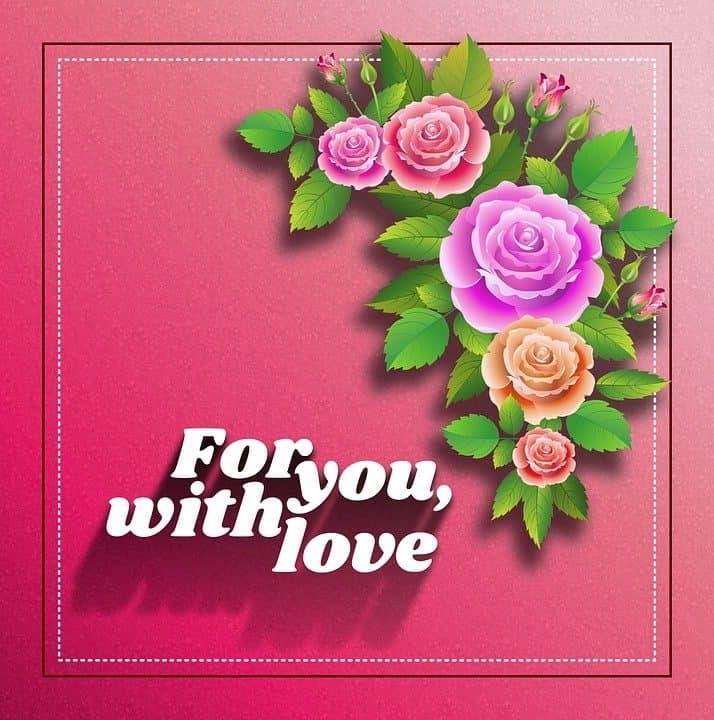 rosas romanticas amor